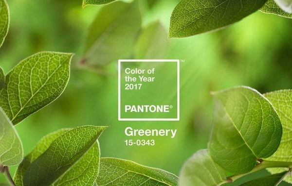 publish_pantone-color-of-the-year-2017-greenery_4246
